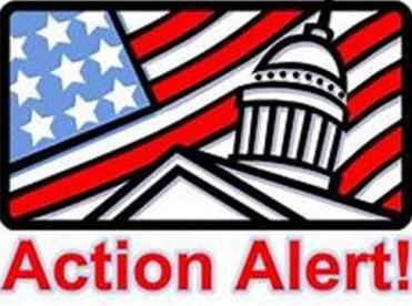Action Alert 1