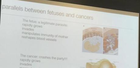 ucsd_slide_capture-fetus_parasite-othercrop